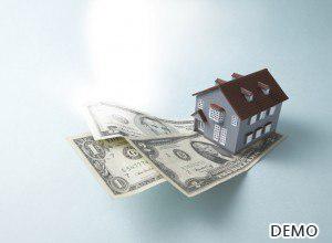 Reverse Mortagage Loans